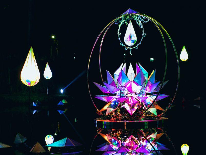幻想的な光と音楽の森、京都「るり渓温泉」に新しい光のアートが登場!