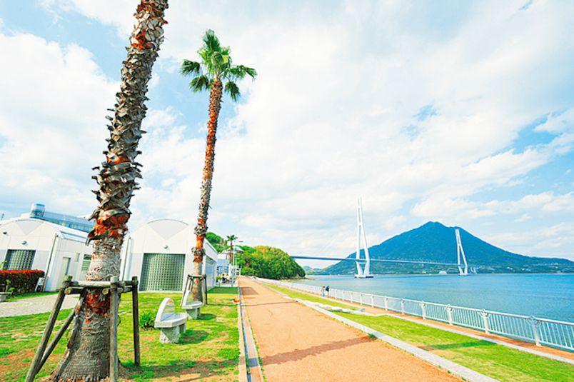 大三島のアート&パワースポットに寄り道!しまなみ海道ドライブプラン