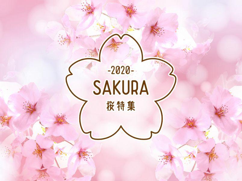 桜特集2020