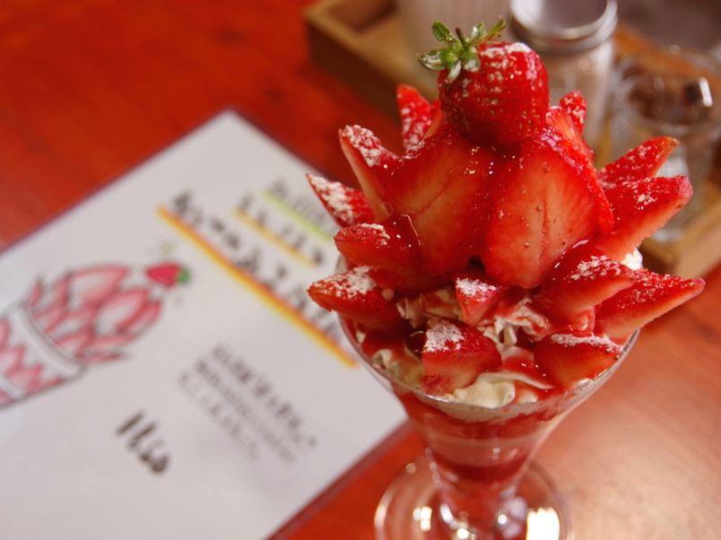 フォトジェニックなパフェに大満足。朝採れイチゴを贅沢に楽しむ!福岡糸島のマスト・スポット