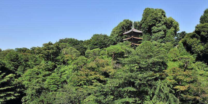 歴史的風情と美しい庭園に囲まれた「ホテル椿山荘東京」