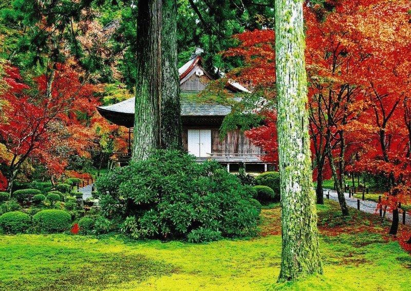 【京都】紅葉も有名!大原の歴史スポット半日さんぽプラン
