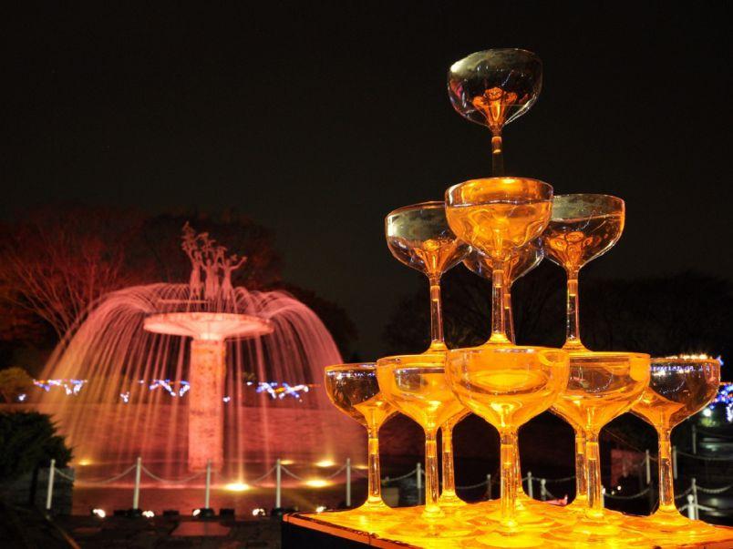 イルミ×冬の花火も!国営昭和記念公園の幻想的なイルミを見に行こう
