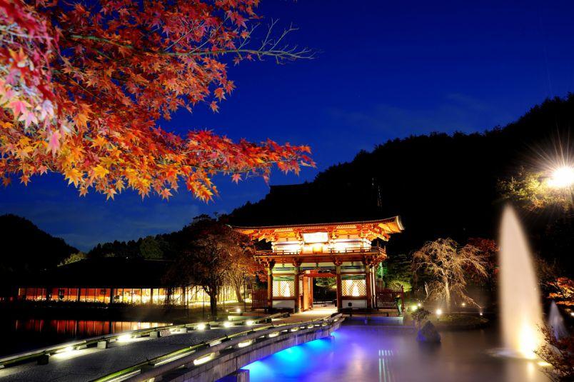 11月末まで!「勝ちダルマ」で有名な「勝尾寺」の幻想的な紅葉ライトアップ
